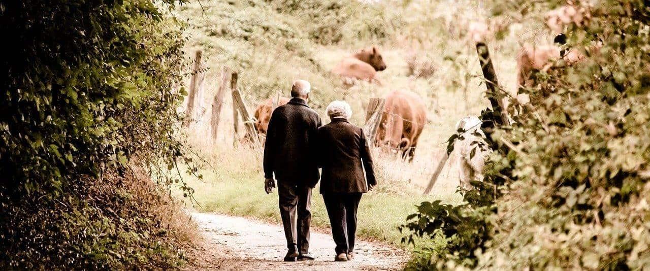 Pflichtversicherung Rente
