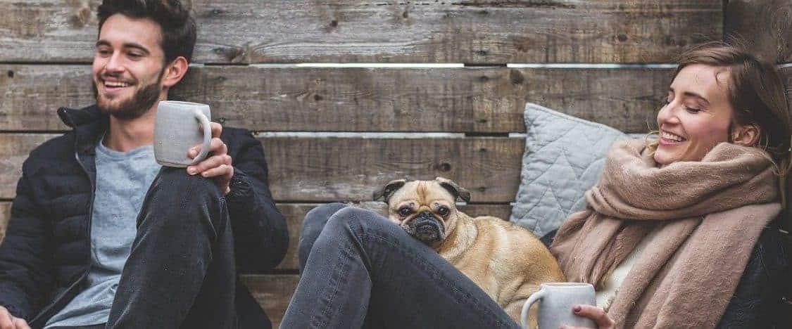 Hundeversicherungen